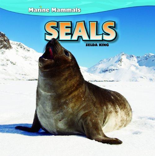 Seals (Marine Mammals)