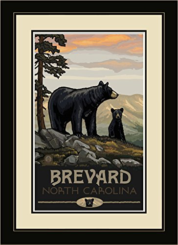Northwest Art Mall BBF Blowing Rock North Carolina Black Bear Family Framed Wall Art by Artist Paul A. Lanquist, 16