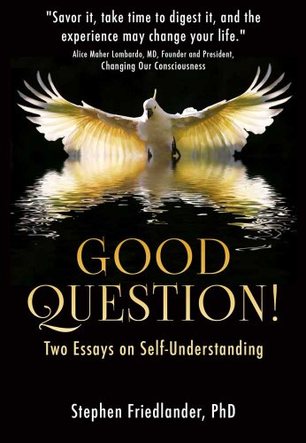 good question two essays on self understanding   kindle edition by  two essays on self understanding by friedlander phd