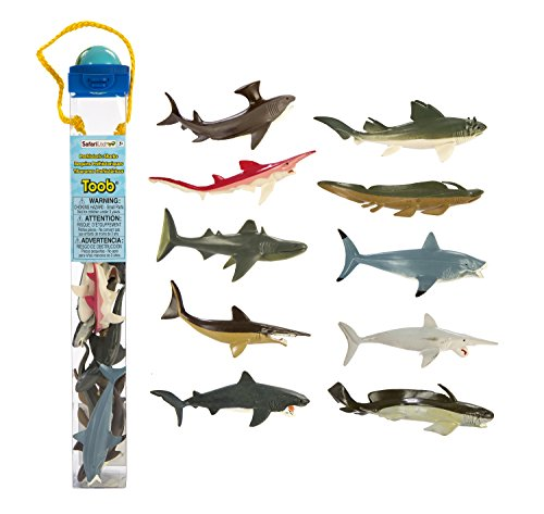 Safari Ltd  Prehistoric Sharks TOOB Ocean Toob