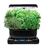 AeroGarden Harvest with Gourmet Herb Seed Pod Kit Black