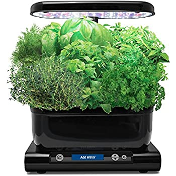 AeroGarden Harvest with Gourmet Herb Seed Pod Kit, Black