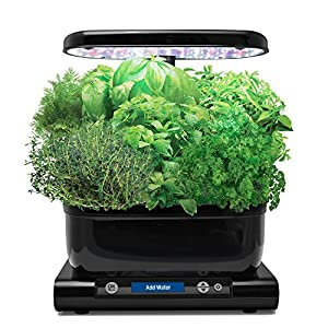 AeroGrow-Miracle-Gro-AeroGarden-Harvest-Black-with-Gourmet-Herb-Seed-Pod-Kit