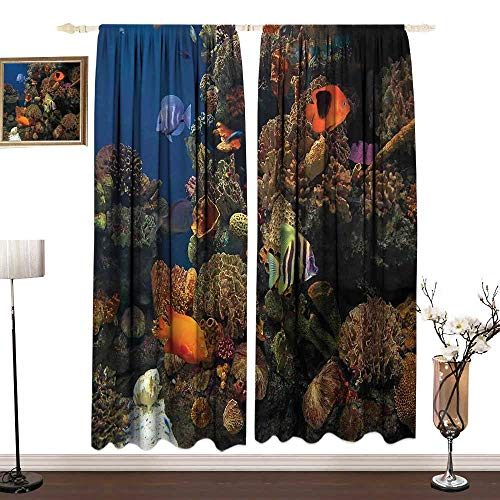 DESPKON-HOME Ocean Window Curtains Set Bedroom Decor Undersea Wildlife Environment with Colorful Sponge Corals Tropic Fishes Curtain Backdrop W108 x L96 in Brown Orange and Blue