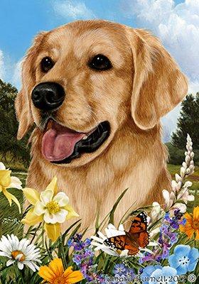 Best of Breed Golden Retriever Summer Flowers Garden - Golden Flag Sweet
