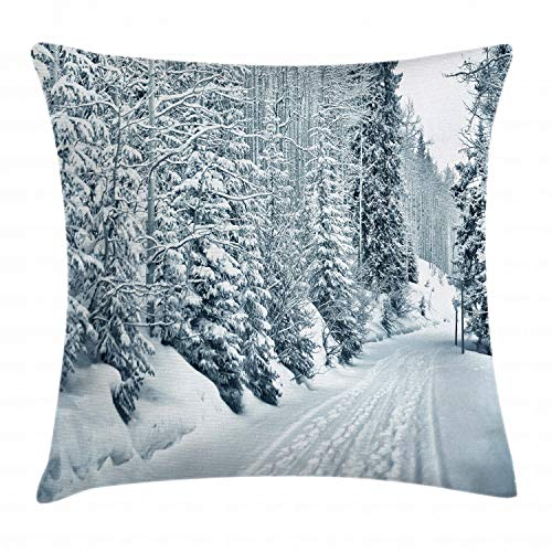 """Ambesonne Winter Throw Pillow Cushion Cover, Ski Themed Snowy Road Cold Parts of The World Footprints Colorado United States, Decorative Square Accent Pillow Case, 20"""" X 20"""", White Black"""