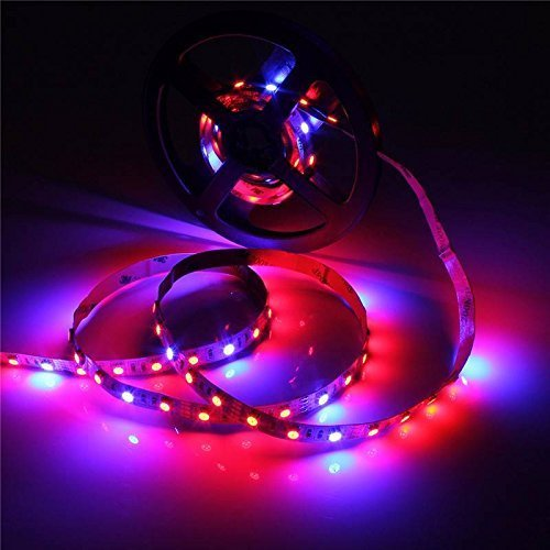 Top 10 Best Led Rope Grow Lights Reviews 2019 2020 On