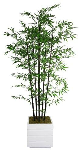 Tabletop Tree Silk Bamboo - Laura Ashley VHX106211 78-Inch Black Bamboo Tree in 14-Inch Fiber Stone Planter