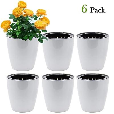 SAND MINE Self Watering Planter White Flower Pot (6, XL) : Garden & Outdoor