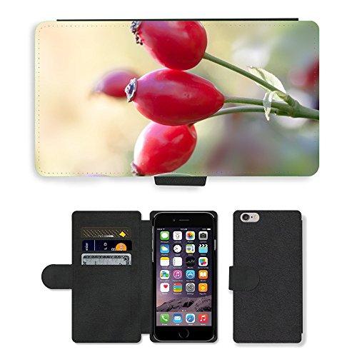"Just Phone Cases PU Leather Flip Custodia Protettiva Case Cover per // M00128182 Rose Hip Canina Fruit Rouge Wild Rose // Apple iPhone 6 4.7"""