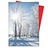 B6655FXSG Box Set of 12 Christmas Sunrise Joke Christmas Note Card Featuring Sun Shinning on Stunning Snow Covered Vistas; with Envelopes