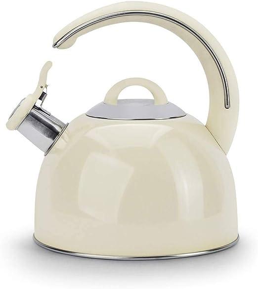 Edelstahl Wasserkessel 2L Flötenkessel Teekessel Wasserkocher Induktion Silbern