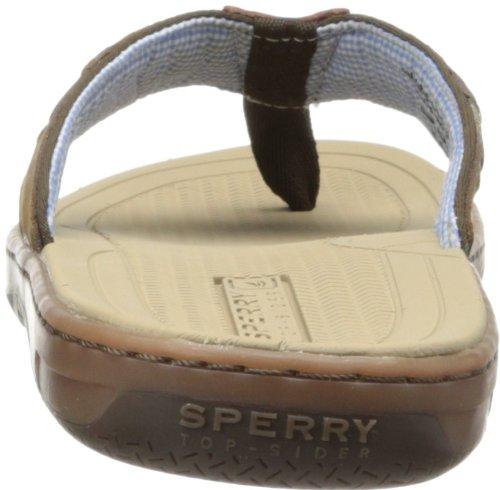 Sperry Top-sider Mens Betesfisk Rem Sandal Brun / Buck Brun