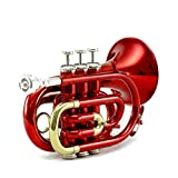 Sky Band Approved Brass Bb Pocket Trumpet with Case, Cloth, Gloves and Valve Oil, Guarantee Top Quality Sound, Gold (Red)