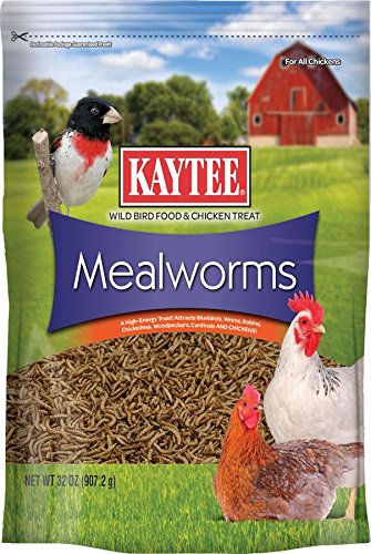 kaytee-products-100522905-meal-worms-32-oz