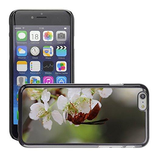 """Just Phone Cases Hard plastica indietro Case Custodie Cover pelle protettiva Per // M00129122 Plum Fleurs Insectes printemps Ant // Apple iPhone 6 PLUS 5.5"""""""