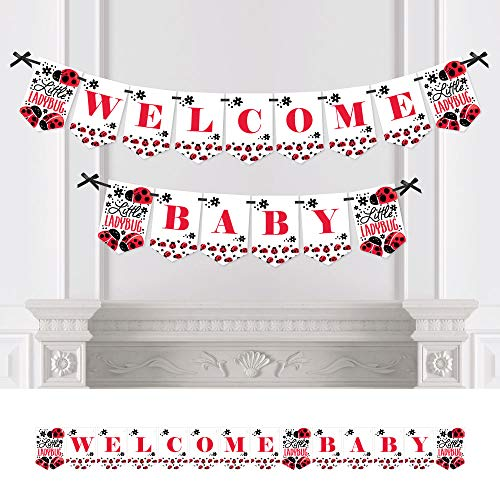 (Modern Ladybug - Baby Shower Bunting Banner - Ladybug Party Decorations - Welcome Baby)