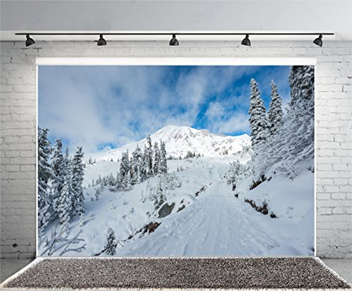 (Leyiyi 7x5ft Photography Background Snowcovered Mountain Backdrop White Hill Summit Pine Fir Winter Climbing Blue Sky Sunlight Road Path Himalayan Alps European Travel Photo Portrait Vinyl Studio Prop)