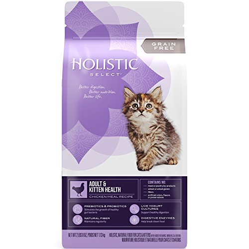 Holistic Select Natural Grain Free Dry Cat Food, Adult & Kitten Recipe, 2.5-Pound Bag