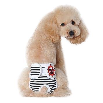 Lamzoom - Pantalón Corto para Perros y Gatos con Pantalones fisiológicos Lavables, Pantalones de higiene