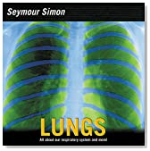 Lungs: All about Our Respiratory System and More!