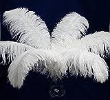 Perfectmaze 50 Piece 18''-20'' Ostrich Feather Premium Quality for Wedding Party Centerpiece Vase Decoration