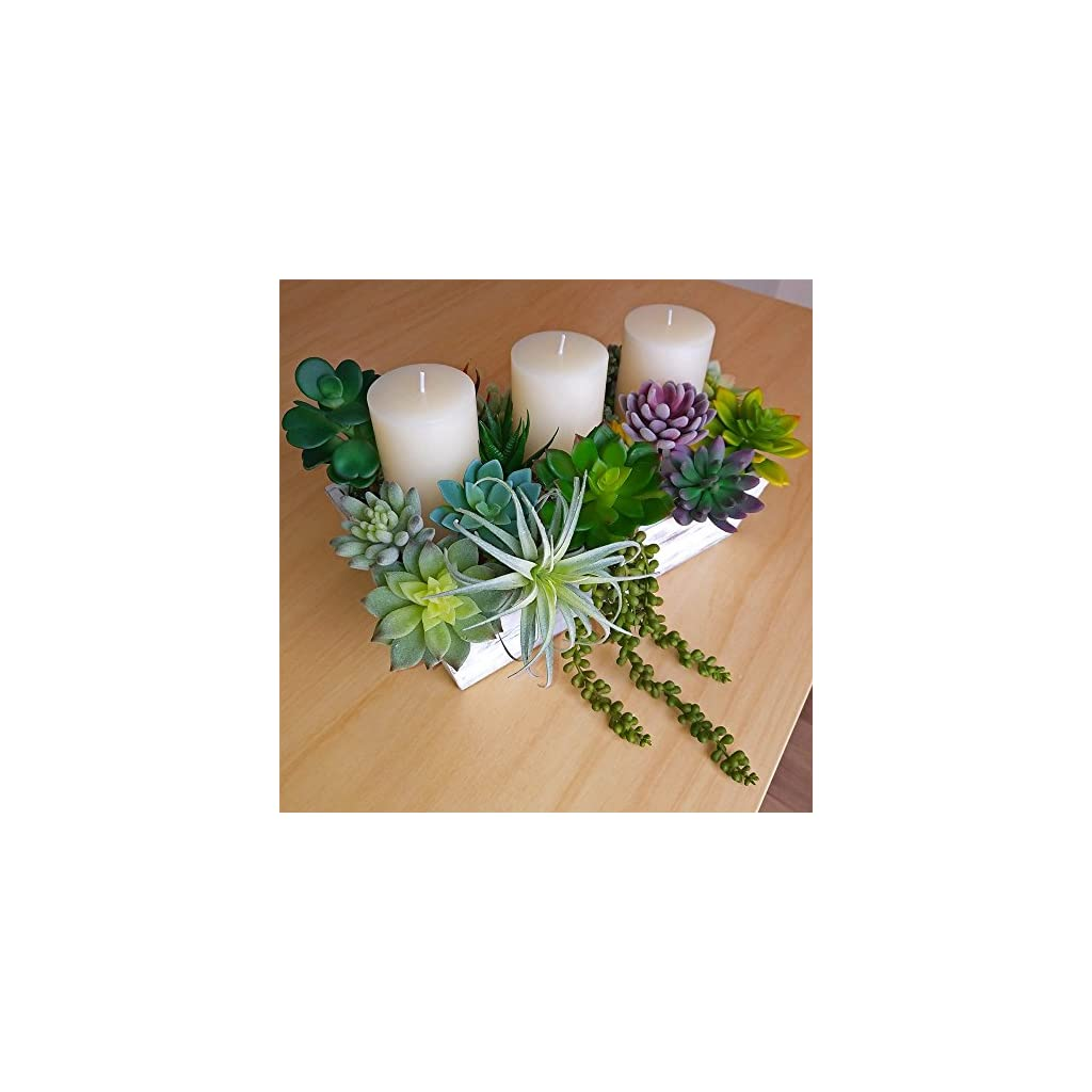 Supla-14-PCS-Fake-Succulents-Plants-Unpotted-Artificial-Succulent-Plants-Faux-Succulents-Fake-Mini-Aloe-Echeveria-Agave-Kalanchoe-Succulents-Plants-Tillandsia-Air-Plant-Stems-for-Floral-Arrangement