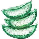 Garnier Fructis Pure Clean Shampoo, Paraben-Free