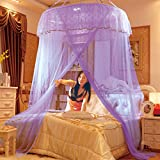 Dome ceiling princess bed canopy, Palace Enlarge Double Oversized mosquito net mosquito-curtain for twin Queen and king size -I Full-size