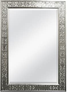 MCS 24x36 Inch Beveled Mirror 32x44 Overall Size Champagne 47700