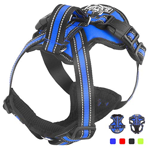 (No-Pull Dog Harness with Front & Back, Upgraded Safety Service Dog Vest Harness - Adjustable Easy TAKE ON & Off Pet Halters with Nylon Handle(Blue,L))
