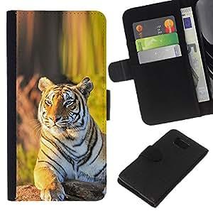 Planetar® Modelo colorido cuero carpeta tirón caso cubierta piel Holster Funda protección Para Samsung ALPHA / SM-G850 / S801 ( tigr zver vzglyad zelen )