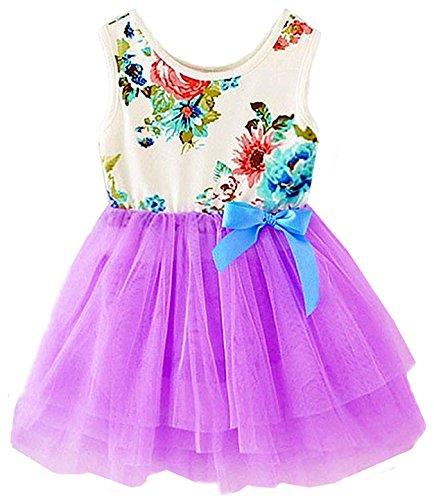 2Bunnies Baby Girls Toddler Sleeveless Floral Princess Dress Tulle Tutu Sundress (12M, Purple)