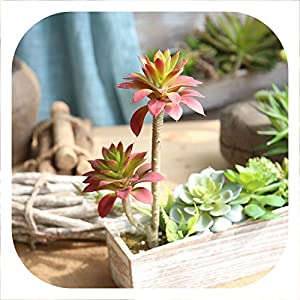Memoirs- Artificial Succulents Land Lotus Plants Grass Artificial Plants Fake Flower Christmas Decorations for Home Plantas Artificiales 81