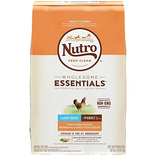 NUTRO WHOLESOME ESSENTIALS  Large Breed Adult Farm-Raised Chicken, Brown Rice & Sweet Potato Recipe 30 Pounds (Packaging May Vary)