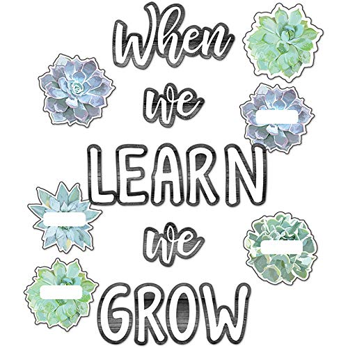 Carson Dellosa CD-110410BN Simply Stylish When We Learn We Grow Bulletin Board Set - Pack of ()