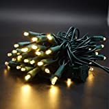 Grand Decor LED Christmas Mini Light Set 50 Light 5MM Conical Wide Angle Indoor/Outdoor Use 120V UL Certified Green Wire 17Ft (Warm White)