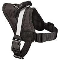 """Guardian Gear Excursion Dog Harness, Large, Fits Chests 27"""" to 36"""", Black"""