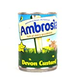 Ambrosia Devon Custard in 15oz Can
