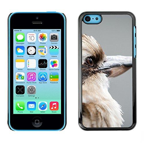 Premio Sottile Slim Cassa Custodia Case Cover Shell // F00014711 oiseau // Apple iPhone 5C
