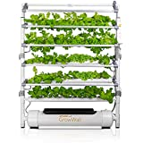 OPCOM Farm GrowWall - 75 Pot Vertical Hydroponic Growing System - All Year Round Indoor Farming - Height and Angle…