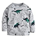 Little Hand Unisex Kids Boys Clothing Tops Pullover Sweaters Cartoon Long Sleeve t Shirts Jumpers Sweatshirt 1 2 3 4 5 6 Years (5-6 Years, Grey 1)