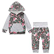 Toddler Baby Girl 2pcs Set Outfit Floral Striped Print Flower Hoodies Top and Floral Pants Leggings Set with Kangaroo Pocket Gray