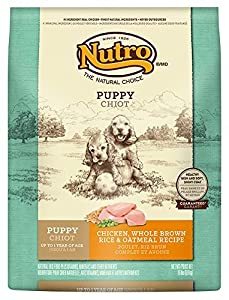 delicate NUTRO Puppy Chicken, Whole Brown Rice and Oatmeal Recipe Dog Food 15 Pounds by Nutro Core Dry Dog