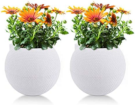 T4U 10CM プラスチック鉢 自己給水 植木鉢 プランター 給水ヒモ 園芸ポットバラ 蘭 ハーブ 観葉植物適用 丸型 ホワイト 2点セット