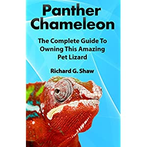 Panther Chameleon: The Complete Guide to Owning this Amazing Pet Lizard 2