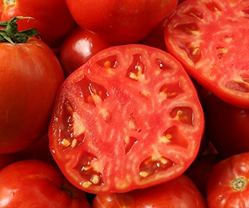 Oxheart Tomato seeds - Lycopersicon esculentum - GardenSeedsMarket