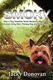 Smoky. How a Tiny Yorkshire Terrier Became a