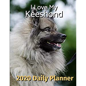 I Love My Keeshond: 2020 Daily Planner (I Love My Dog Daily Planner 2020) 36