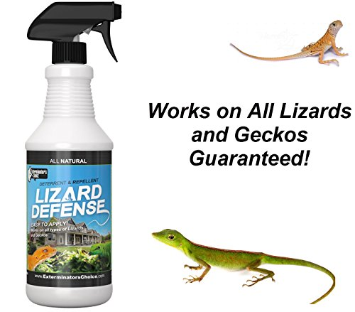 Lizard Defense All Natural Deterrent and Repellent Spray – Safe and Effective for All Types of Lizards and (Gecko Lizard)